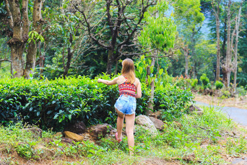 young white tourist girl picking tea leaves on tea plantation
