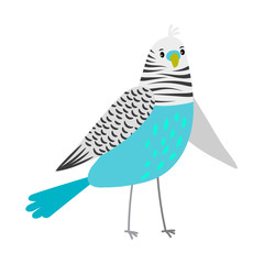 Blue cartoon parrot