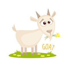 Goat Vector illustration isolated