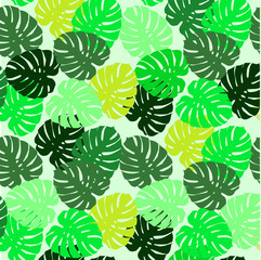 Beautiful bright tropical background - monster leaves. Tropical leaves