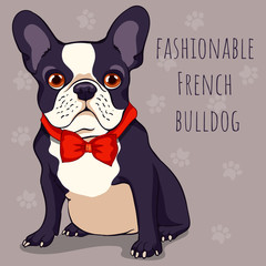 fashionable cute French bulldog with a black and white color of wool in red bow tie. Cartoon character. Vector illustration.