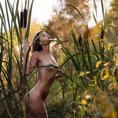 Sexual nude woman posing in the thicket of reeds.