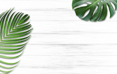 Wall Mural - Monstera deliciosa and yellow palm tropical leaves isolated on white wood background with copy space