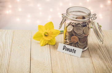 Donate money jar savings motivational concept on wooden board with yellow daffodil flower