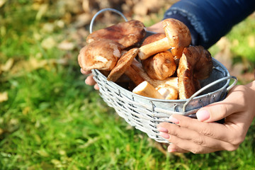 Woman with basket full of mushrooms in forest
