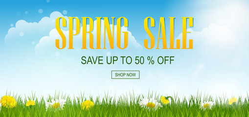 Spring sale banner with field. Spring flowers with grass