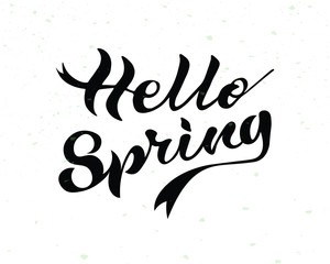 Vector illustration of Hello Spring text. Hand lettering for inspirational poster, card etc.Design for holiday greeting card and invitation of seasonal spring holiday.