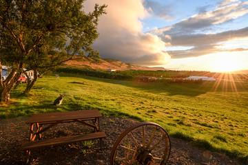 Fotoväggar - ländliche Idylle in leuchtendem Abendlicht