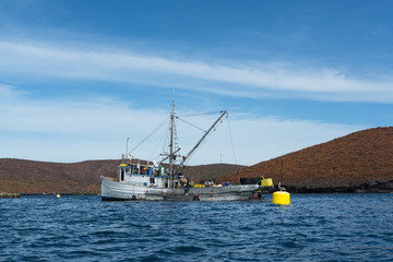 Los pescadores del barco pesquero y la lancha están trabajando en los criaderos de atún.