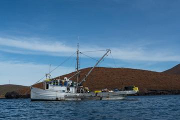 El barco pesquero y la lancha en los criaderos de atún.