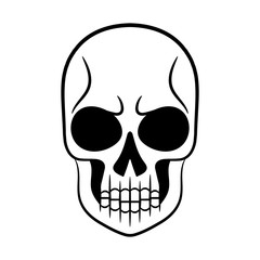 Vector black and white illustration of human skull