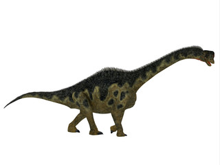 Europasaurus Dinosaur Side Profile - Europasaurus was a sauropod herbivorous dinosaur that lived in Germany, Europe during the Jurassic Period.