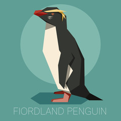 Flat Fiordland Penguin