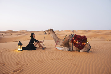 Side view of woman with camel sitting on sand at Sahara Desert against clear sky