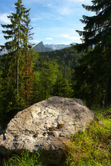 Big Stone with mountains on background, Austria