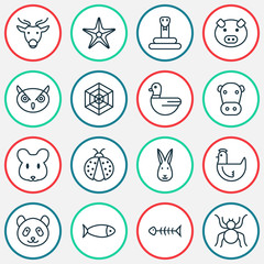 Nature icons set with arachnid, spider web, rabbit and other seafood skeleton  elements. Isolated vector illustration nature icons.
