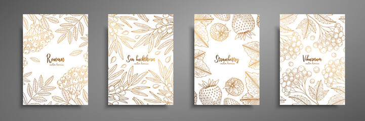 Gold collection of cards design with berries. Vintage gold frame with ripe berries illustrations - rowan, sea buckthorn, strawberry, viburnum. Great design for natural and organic products.