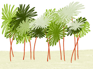 Colorful hand drawn abstract silhouette of green palms on sand and white background, isolated colorful nature illustration painted by pencil pastel chalk, high quality