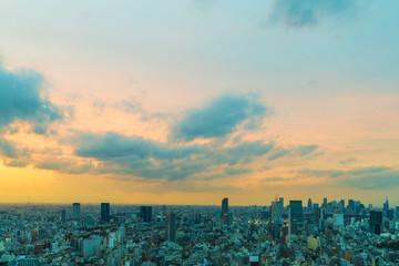 Twilight cityscape panorama.