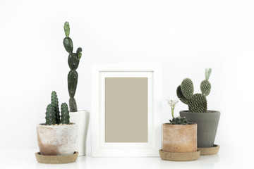 Scandinavian style hipster room interior. Cactus in clay pot with blank photo frame on white background.