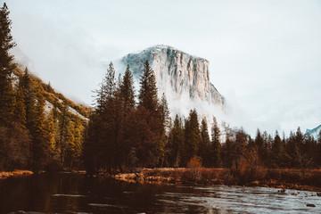 Yosemite Scenic River