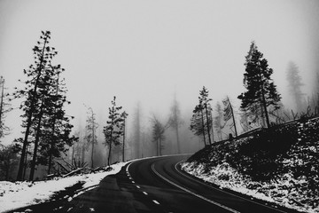 Mountain Road in Fog 2