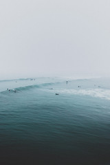 Foggy Surfing Lineup