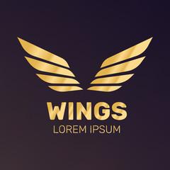 Angel wings vector. Bird wings art. Cartoon sketch of angel wings.