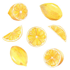 Watercolor hand painted collection of lemon. Can be used for printing and decoration.