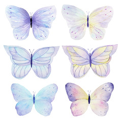 Butterfly hand painted watercolor collection on white background. Can be used for cards,wedding invitations,logo,printing on fabric.