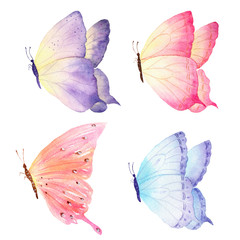 Colorful hand drawn watercolor butterfly collection. Ideal for invitations, cards, wallpapers, printing on fabric.