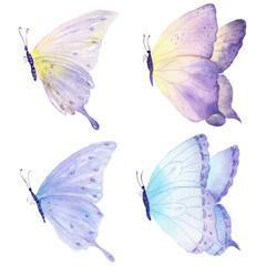 Butterflies flying collection. Watercolor hand drawn sketch on white background.