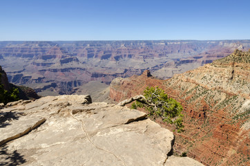 landscape on the grand canyon in the united states of america