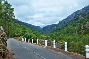 Corsica-road in pass Restonica
