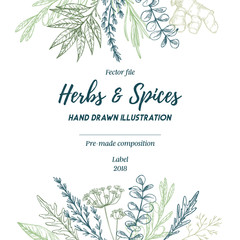 Hand drawn vector illustration. Frame with herbs and spices (sage, tarragon, ginger). Herbal pre-made composition. Perfect for menu, cards, prints, packing, leaflets