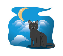 Cat under the light of the moon