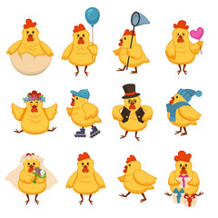 Cartoon chicken funny cute characters for kid design of birthday greeting card template