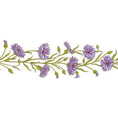 cornflower vector pattern