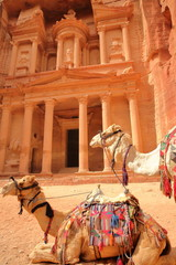 The Treasury (Al Khazneh) with camels in the foreground, Petra, Jordan, Middle East