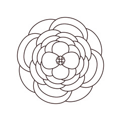 line beautiful rose with nature petals design