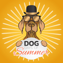 Dog days of summer logo icon design, vector illustration