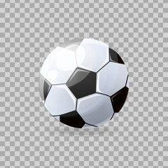 Beautiful realistic classic, soccer ball, playing football, collective occupation.