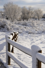 Snow Covered Wood Post Fence with Frosty Trees