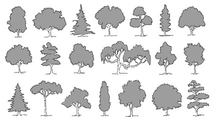 various gray tree