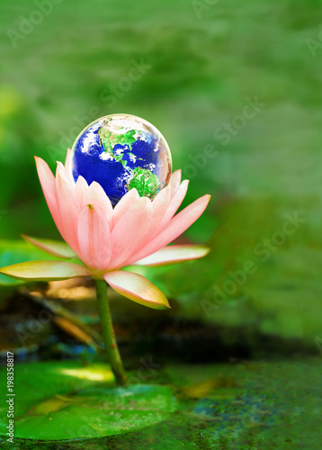 Earth On Lotus Flower Safe The Earth With Love Concept Elements Of