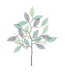 Stylized tree with twigs and skeleton of leaves