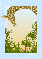 Jungle background with  giraffe and palm leaves. Color card. Engraving style. Vector illustration.