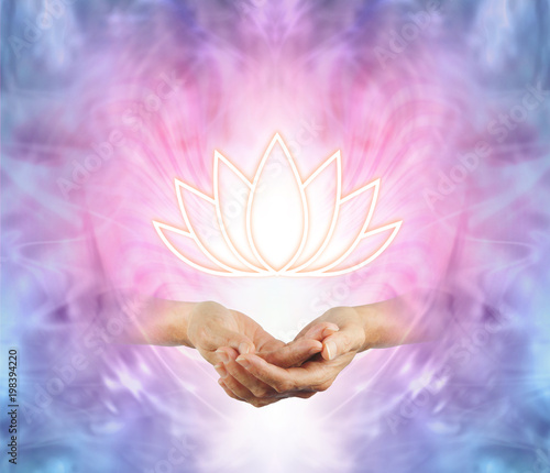 The sacred lotus female cupped hands with an illuminated lotus the sacred lotus female cupped hands with an illuminated lotus flower symbol floating above on mightylinksfo