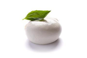 mozzarella and basil over white