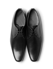 Elegant male shoes on white background